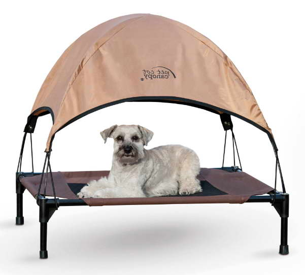 Review Walmart Dog Beds Petswithlove Us