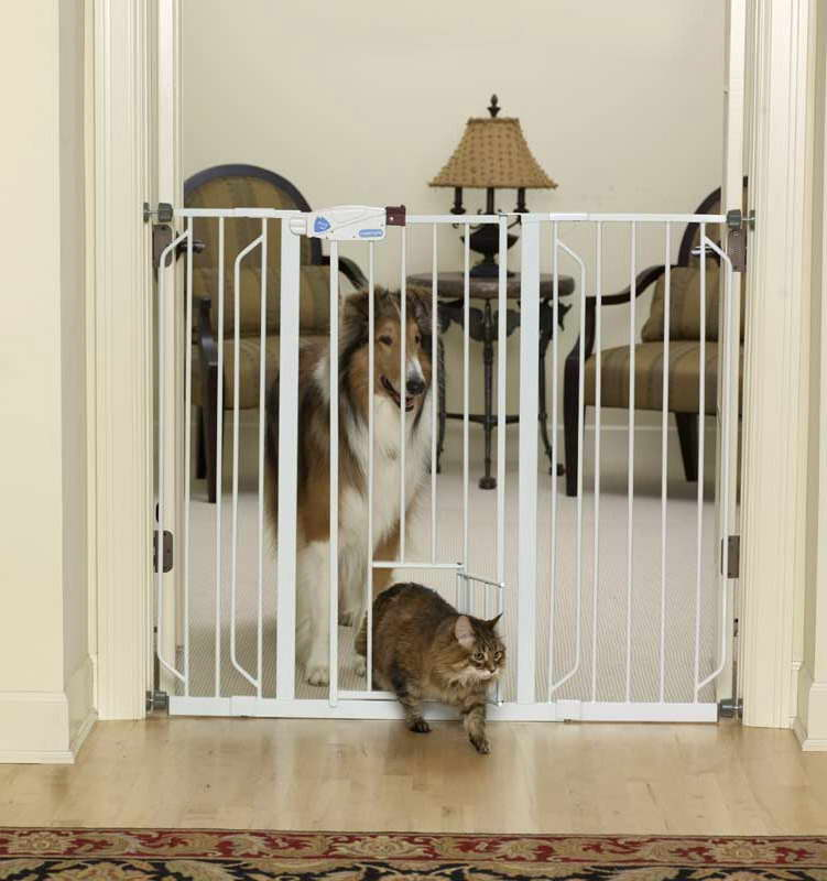 Amazon Dog Gate Big Sale Petswithlove Us