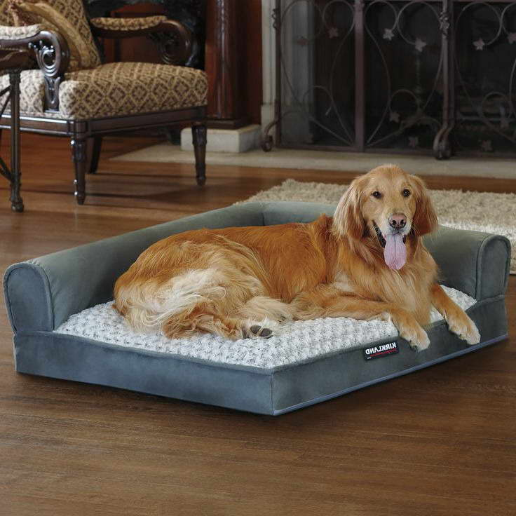 Get Cheap Dog Beds Costco Petswithlove Us