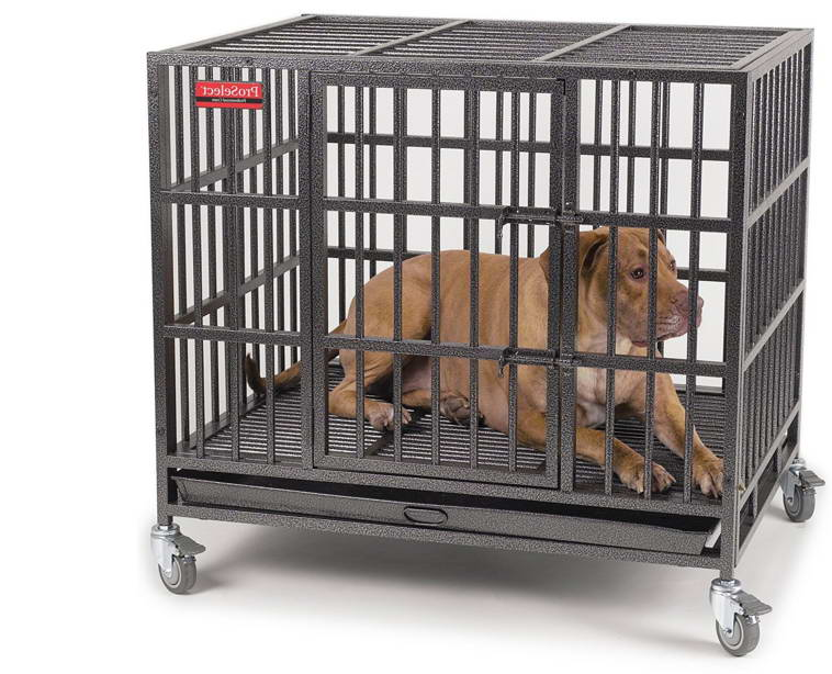 indestructible dog crate where to buy indestructible crate petswithlove us 29348